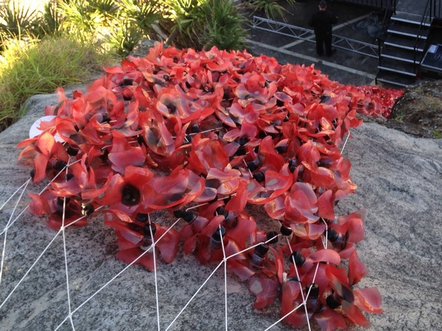 Poppies - tied to shark net (Copy)